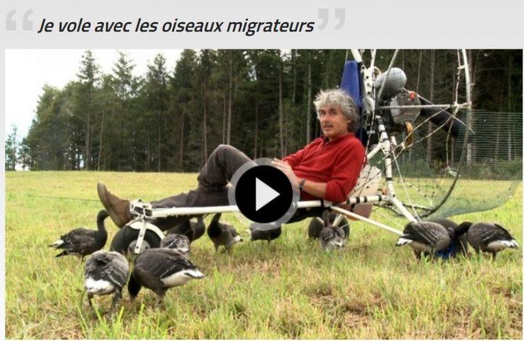 je-vole-avec-les-oiseaux-migrateurs