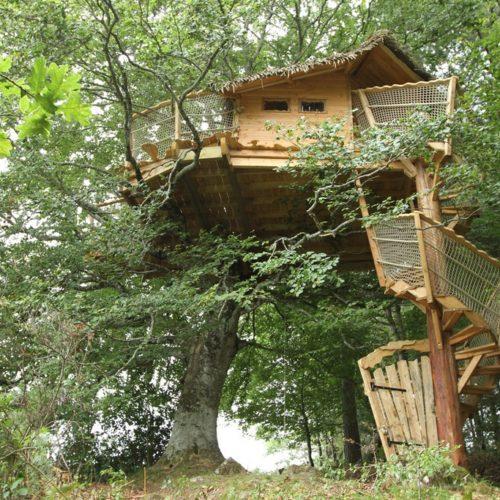 Cabane dans les arbres migrateur