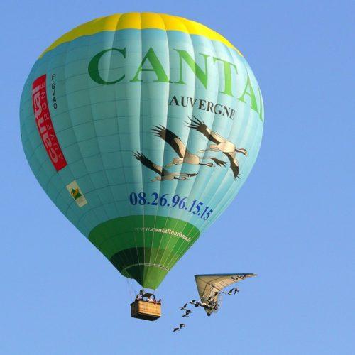 vol-montgolfiere-oiseaux-3