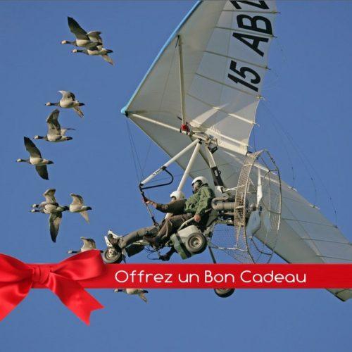 Bon Cadeau vol en ULM avec les oiseaux