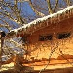 Cabane perchée dans les arbres Cantal Auvergne