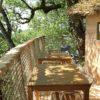Cabane arbre Cygne Chanteur Saint-Simon