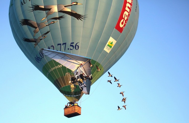 Vol en Montgolfière avec les oiseaux migrateurs