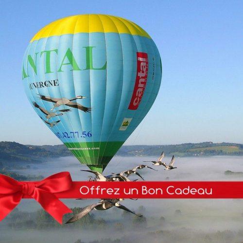 Bon Cadeau Vol en Montgolfière avec les Oiseaux