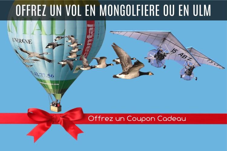 Bon Cadeau Vol en ULM et Montgolfère