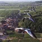 Voler en ULM avec les oies en Alsace